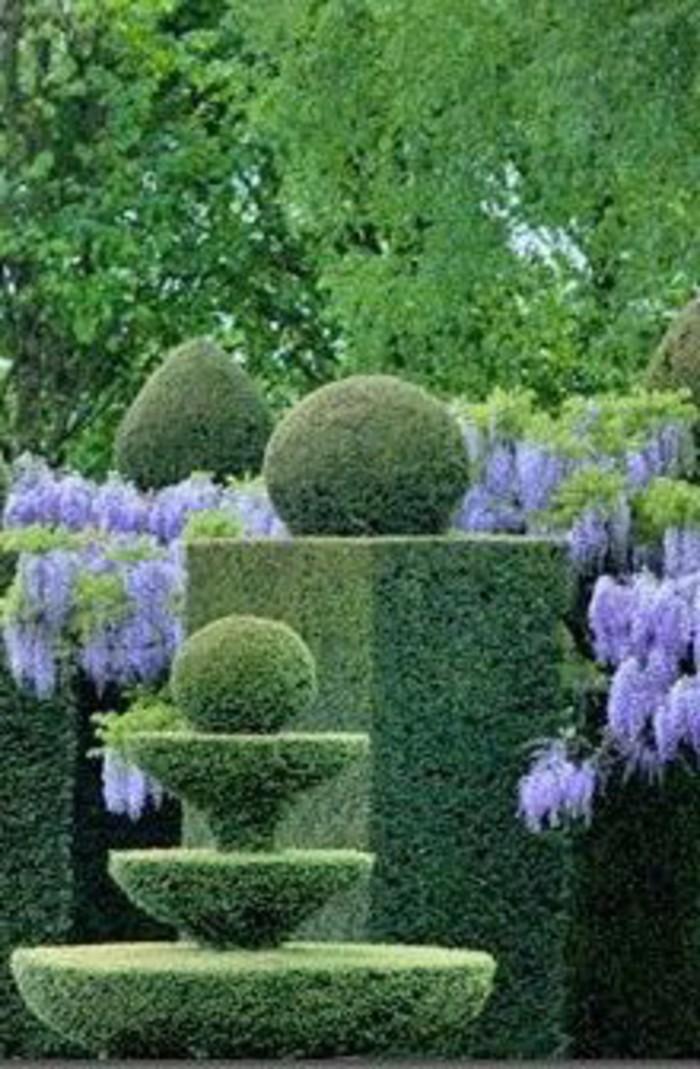118-Murs de cloture. Buis. Fleurs lilas.