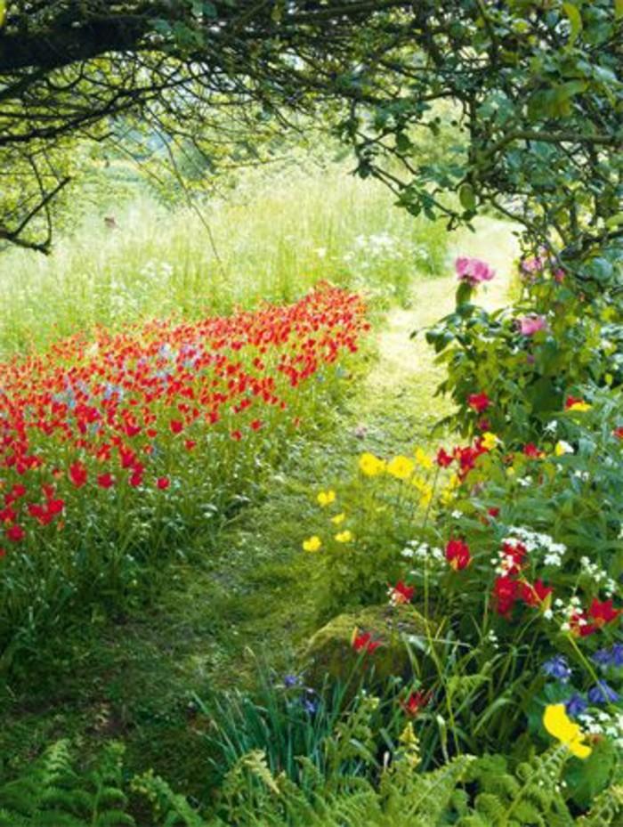 122-Murs de cloture. Fleurs multicolores.