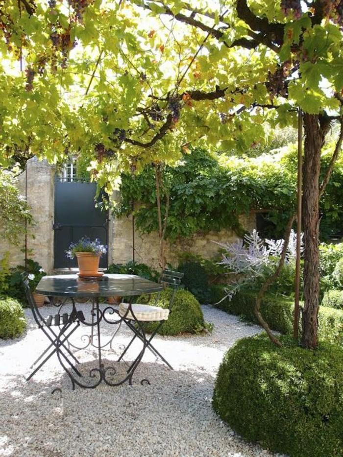 123-Murs de cloture. Une vigne.