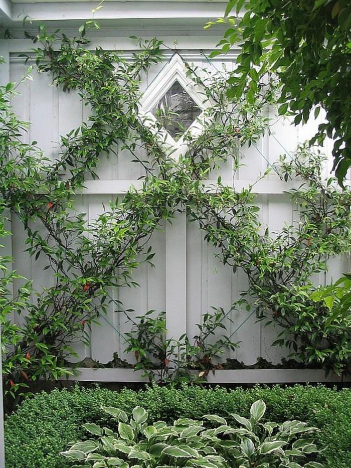 Mur de cl ture plus de 120 photos pour vous for Jardin mur gris