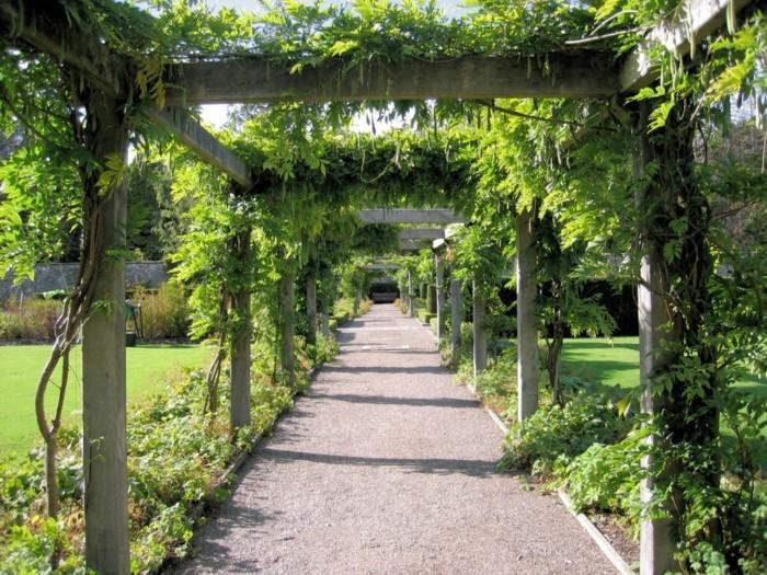 longue-tonnelle-de-jardin-envahi-par-la-verdure