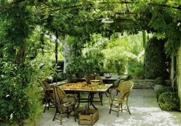 tonnelle-de-jardin-envahie-par-la-végétation-meubles-vintage
