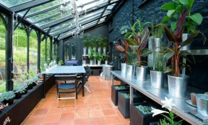 veranda-moderne-en-noir-aménagée-avec-beaucoup-de-plantes-baies-vitrées-toit-veranda-en-verre
