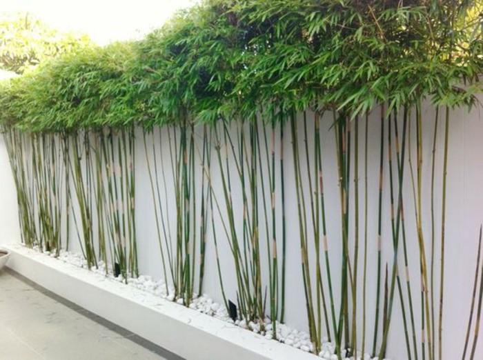 32-Mur de clôture. Couleurs vert et blanc.