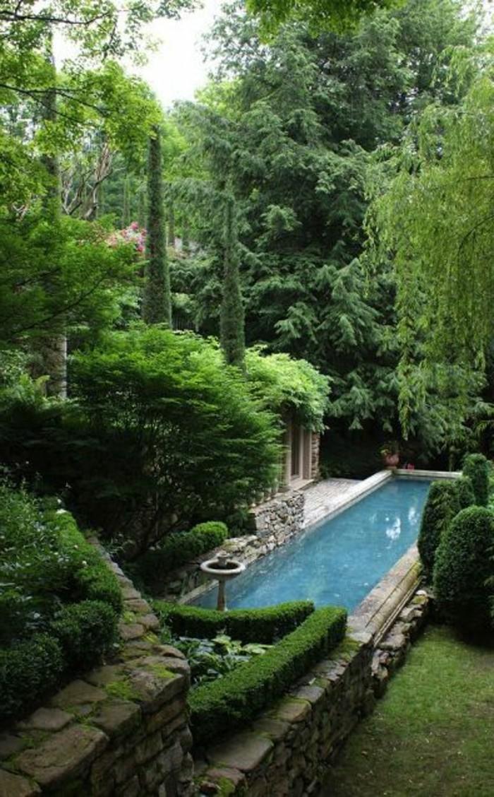 33-Mur de clôture. Buis. Une piscine.