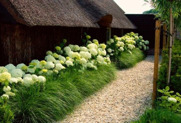 34-Mur de cloture. Fleurs blanches