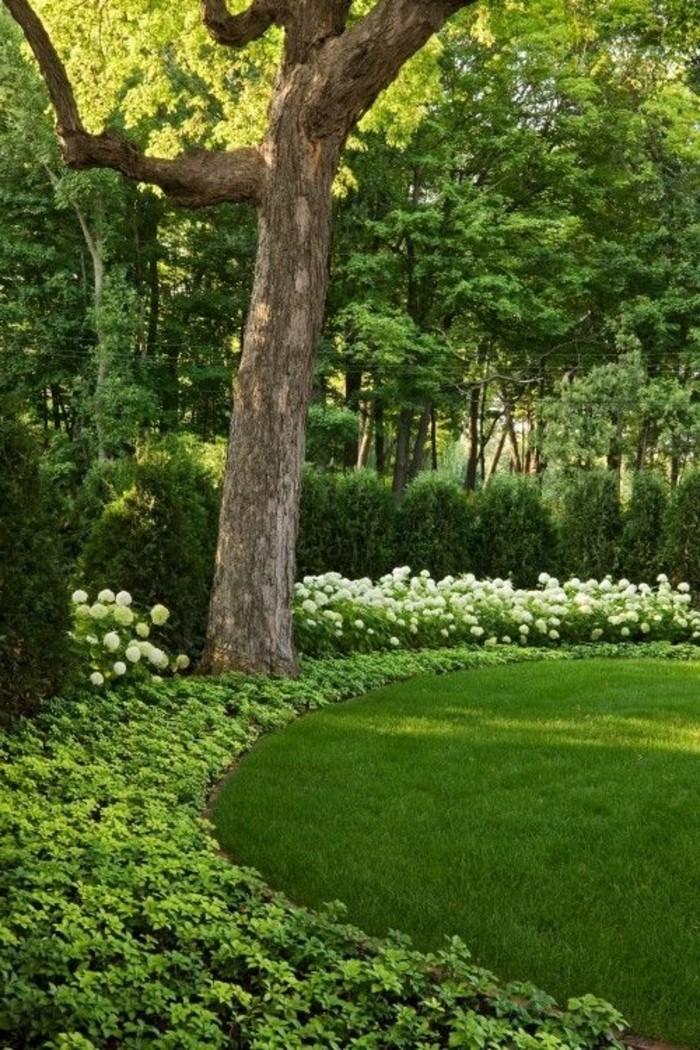 50-Mur de cloture. Pelouse. Fleurs. Un arbre.