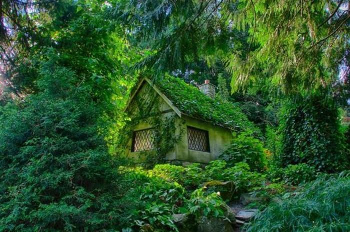 50-deco Disney dans le jardin. Une maison en verdure.