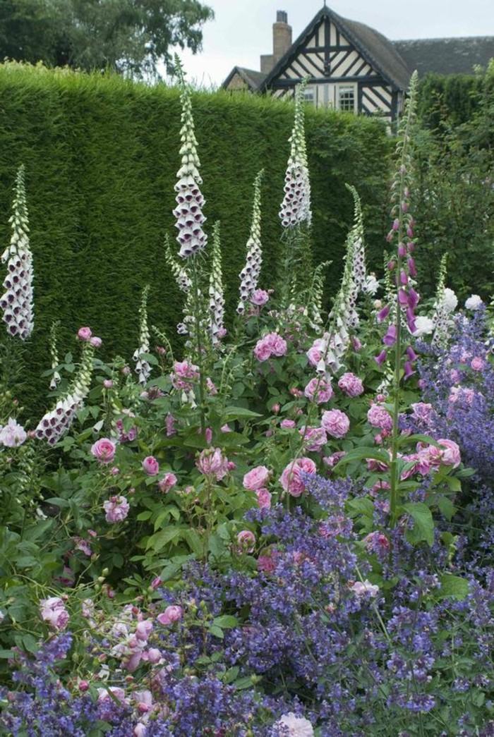 54-Mur de cloture. Fleurs lilas, roses et blanches.