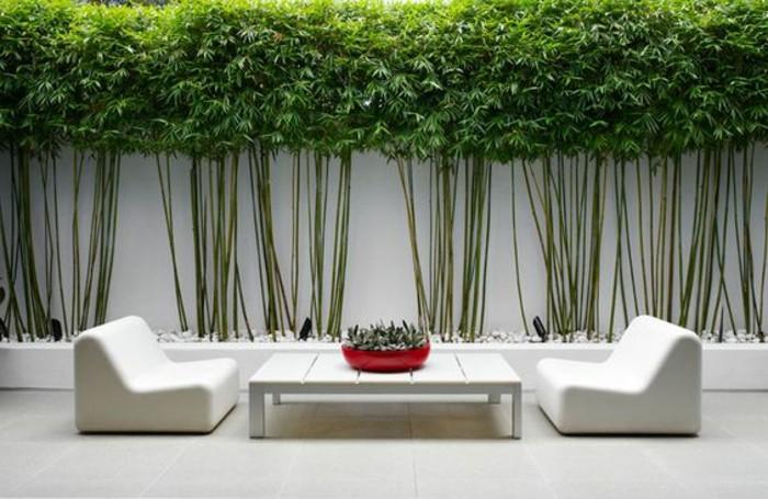 66-Mur de cloture. Deux fauteuils et une table blanches.