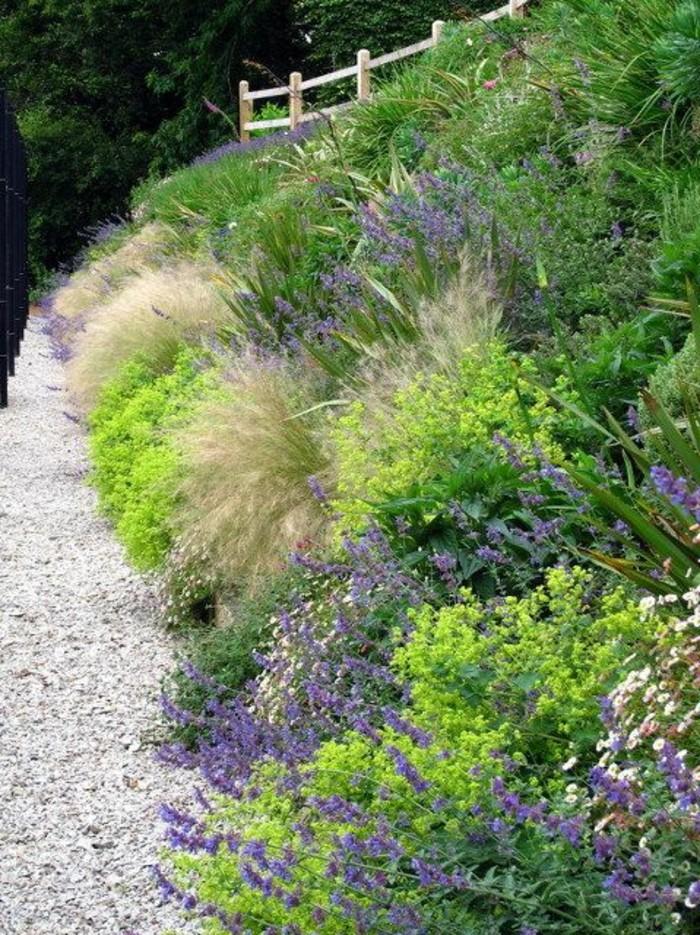 80-Murs de cloture. Herbes de couleurs différentes.