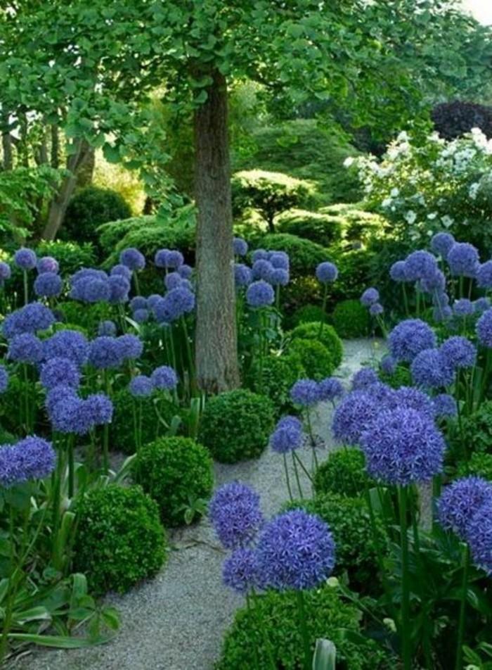 85-Murs de cloture. Fleurs bleues.