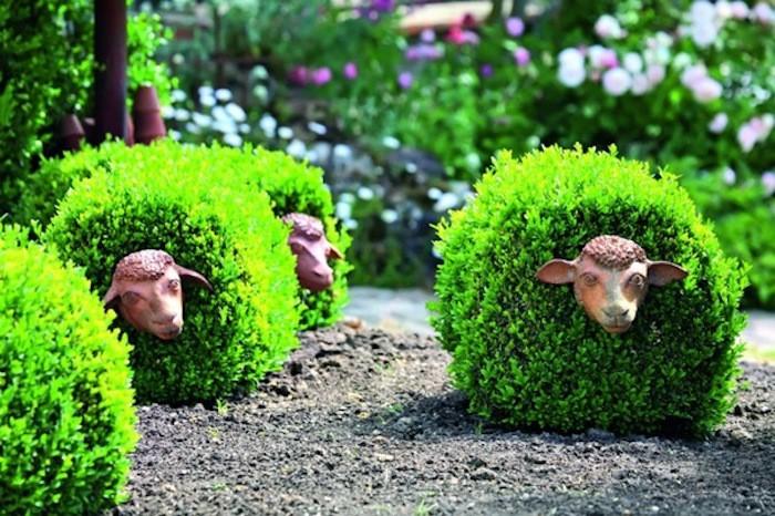 amenagement-jardin-idee-amenager-haie