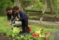 Créer un carré potager dans son jardin | Conseils et idées en 50 photos