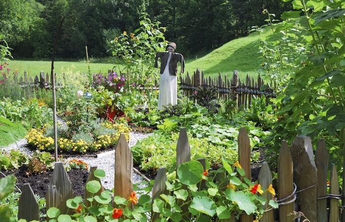 carré-potager-jardin-epouvantail