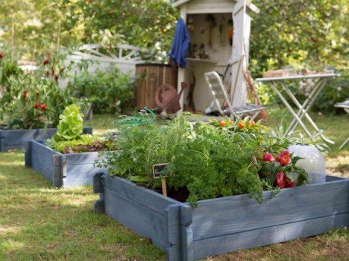 créer un carré potager dans son jardin | conseils et idées en 50