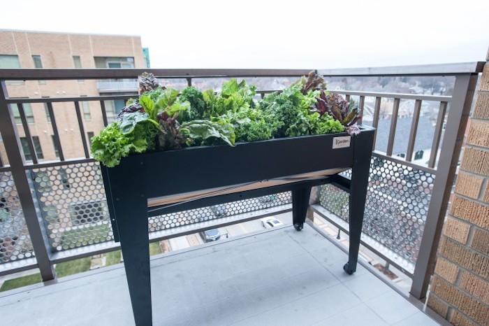 carre-potage-balcon