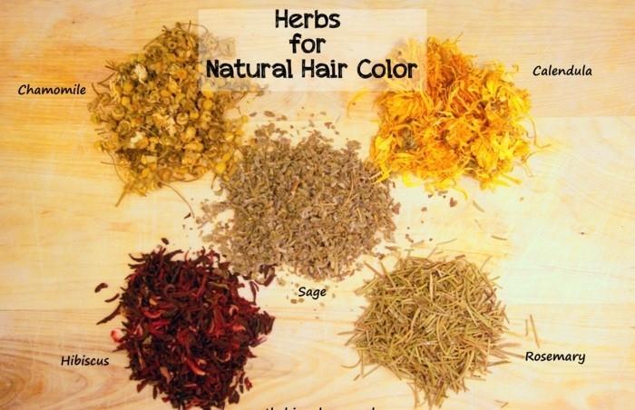 herbs-coloration-naturelle-pour-cheveux-idée