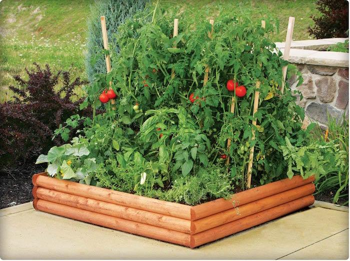 Créer un carré potager dans son jardin | Conseils et idées en 50 ...