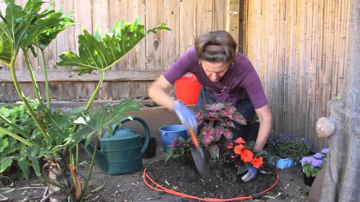 planter-carré-potager