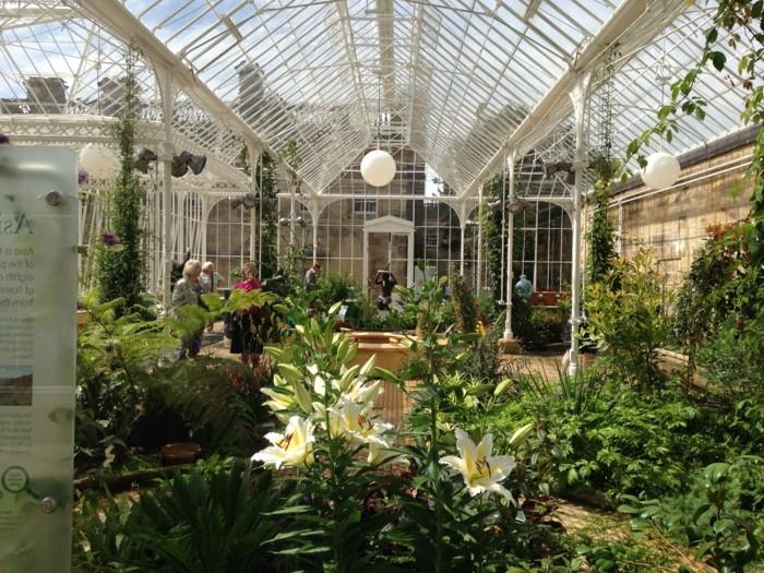 La v randa victorienne du charme l 39 ancienne en 50 photos for Veranda de jardin