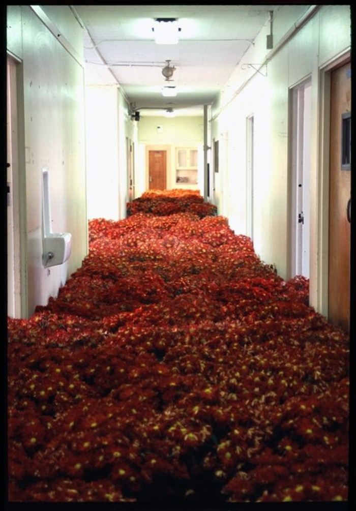 52-long-tapis-de-couloir-fleurs-rouges
