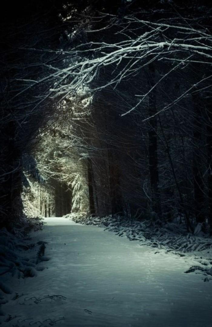 71-Luminaire pour couloir dans un bois.