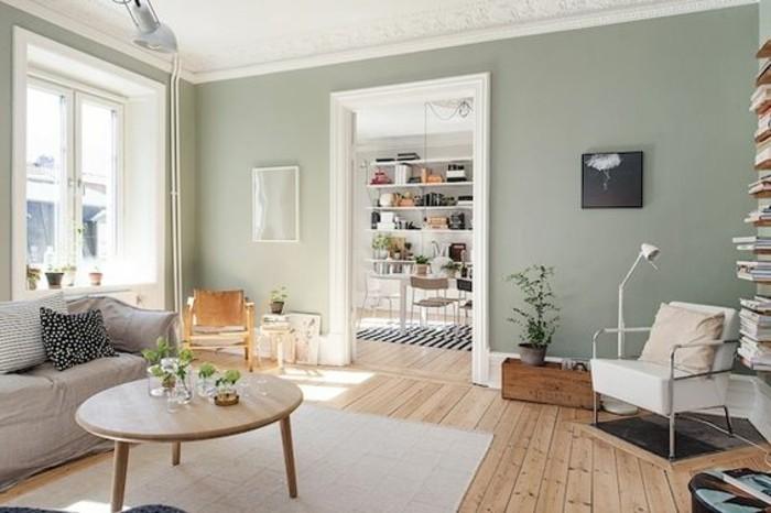 suggestion-couleur-peinture-salon-tres-esthetique-salon-accueillant-qui-baigne-dans-la-lumiere-du-jour