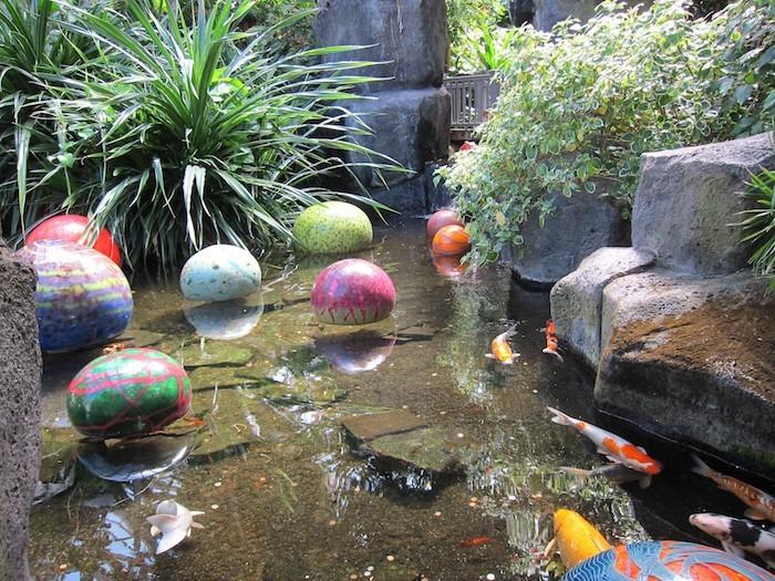 La carpe koi 42 photos de la star des bassins for Prix carpe koi japonaise