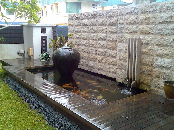 bassin-creuse-carpe-japonaise-koi