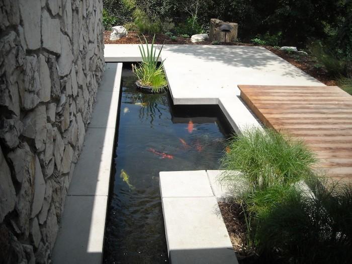 bassin-poisson-design-carpe-koi-japon-etang-moderne
