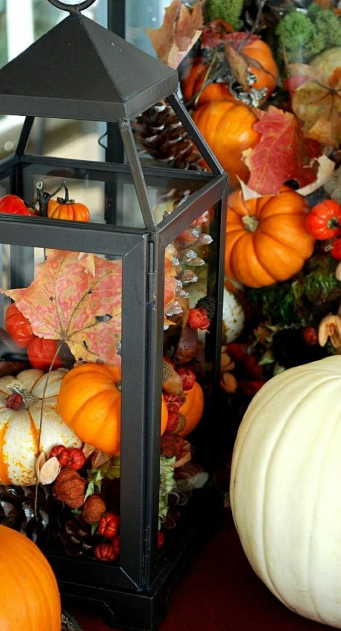 citrouilles-oranges-lanterne-en-fer-noir-composition-florale-halloweeen-idee
