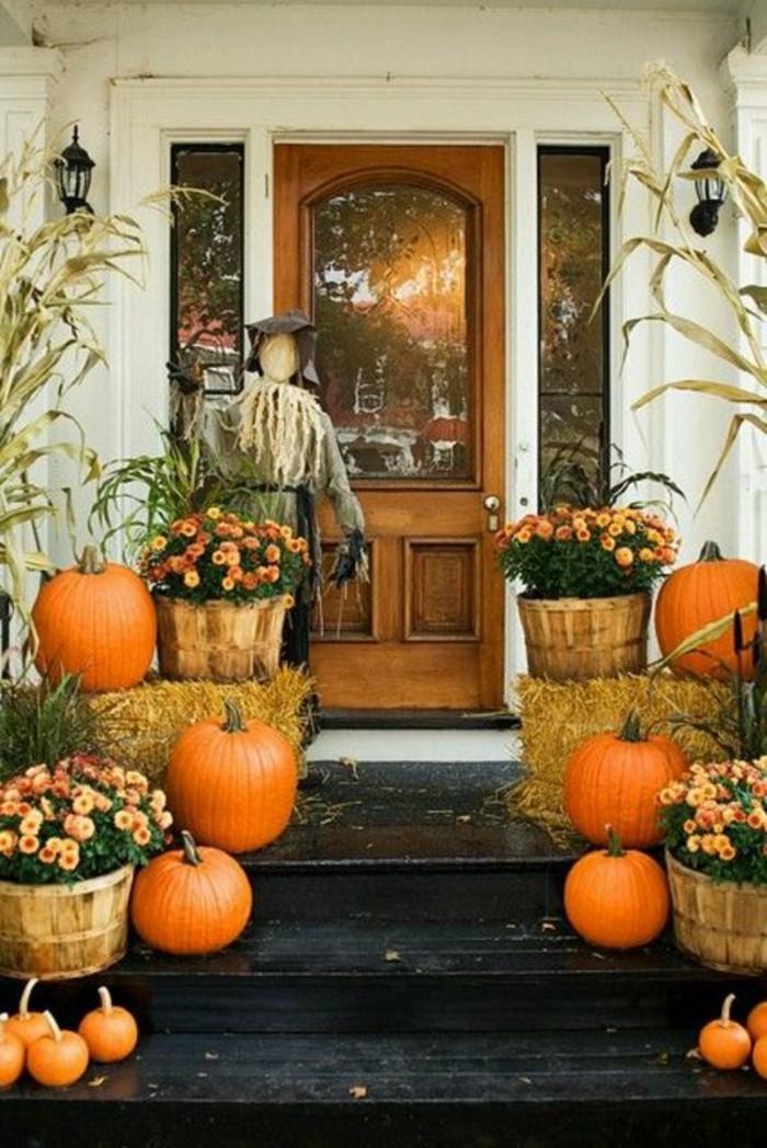 composition-florale-automne-deco-avec-citrouilles-oranges-fleurs-oranges-bricolage-halloween-primaire