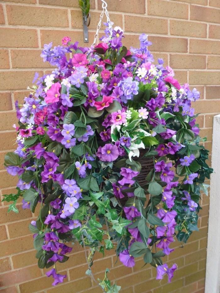 fleur-petunia-suspendue-plantes-retombantes-plante-tombante-balcon