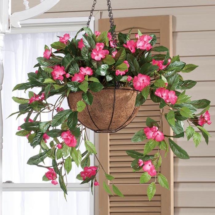 fleurs-impatiens-suspendues-plantes-retombantes-plante-tombante