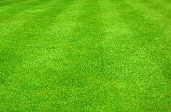 Jardin et gazon anglais optez pour le style so british - Tondre la pelouse anglais ...