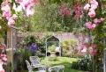 Jardin et GAZON anglais | Optez pour le style so british !
