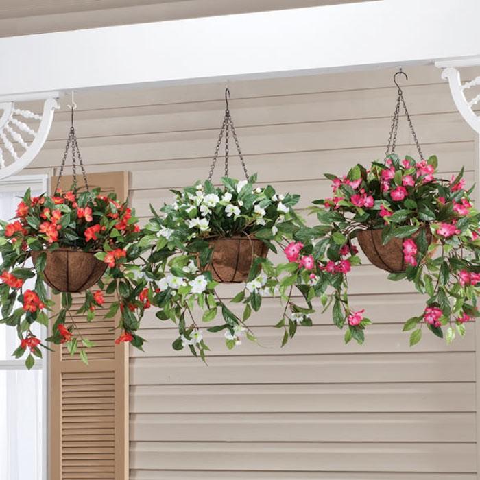 impatiens-suspendue-jardiniere-plante-tombante-plantes-retombantes