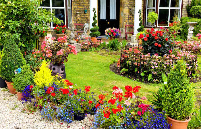 jardin-gardin-comment-avoir-une-belle-pelouse-gazon-ray-grass