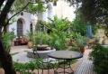 Jardin méditerranéen : 90 idées pleines de soleil