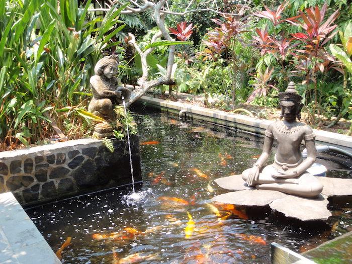 jardin-zen-bassin-koi-ornement-carpe-japonaise