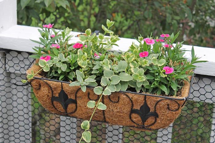 jardiniere-balcon-juliette