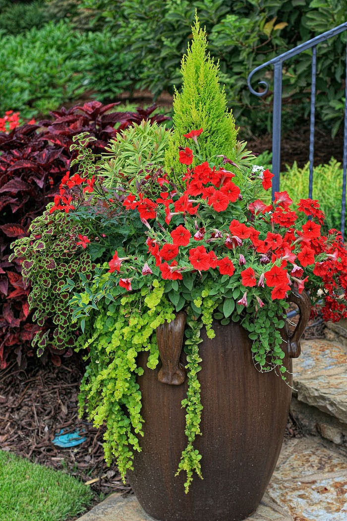 jardiniere-jardin-plante-tombante-bouquet-fleurs-retombantes