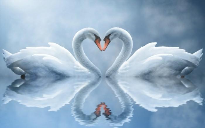 magnifique-figure-virtuelle-joyeux-saint-valentin-amour