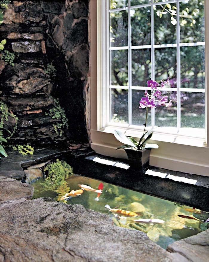 La carpe KOI | 42 photos de la star des bassins - Archzine.fr