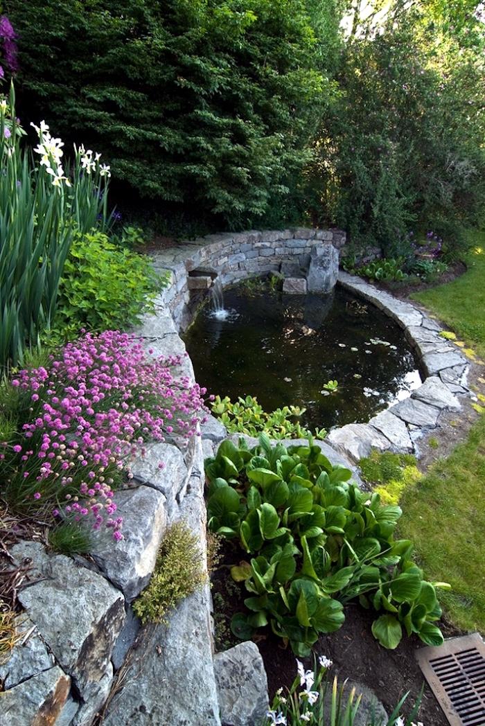 petit-bassin-de-jardin-poisson-carpe-koi-japonaise