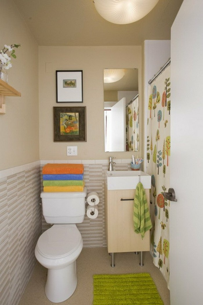 petite-salle-de-bain-cocooning-tapis-vert-salle-de-bain-taupe-meuble-avec-miroir-dans-la-salle-de-bain