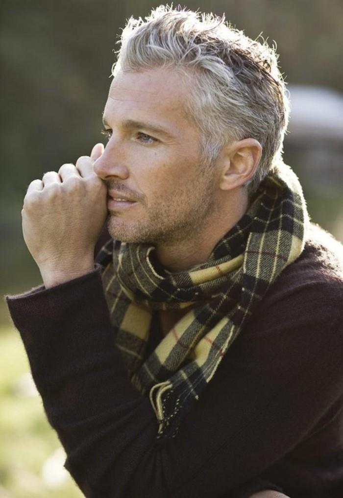 poivre-et-sel-cheveux-teinture-cheveux-gris-homme