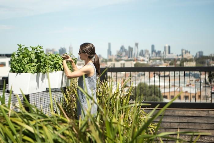 pot-de-fleur-rectangulaire-jardiniere-de-balcon