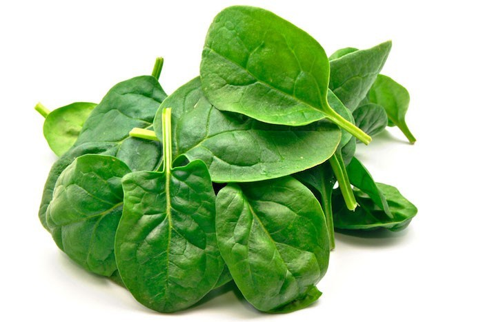 que-planter-en-septembre-epinard-plantation-automne-legumes